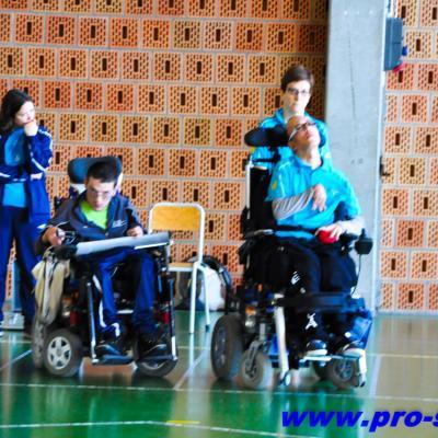 Championnat de France Boccia 2014