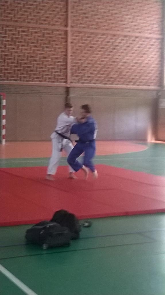 démonstration judo